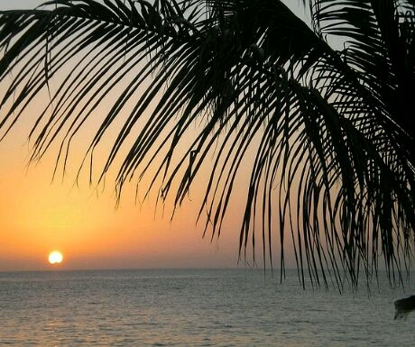 Mexico beach crop 460x385 - 6 Luxurious Holiday Resorts With Private Airstrips