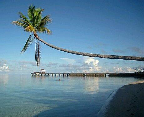 wakatobi beach crop 460x385 460x375 - 6 Luxurious Holiday Resorts With Private Airstrips